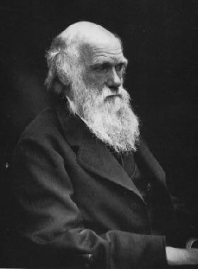 contribution of charles darwin in psychology